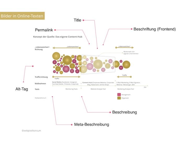 Infografik zeigt die Aufgaben rund um Bilder in Online-Texten für Deine SEO-Strategie - Blog SEO optimieren: Tipps und Tools